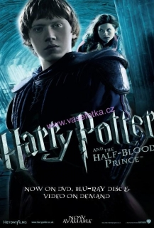 poster č.02020 Harry Potter - Ronald